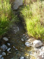 Source#2(Granite Creek)